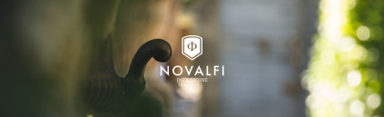 novalfi-branding-01-by_pushaune